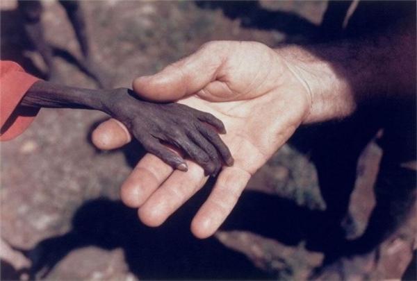 震撼心灵:这十张图片让你感悟生活和希望