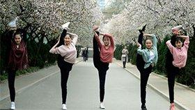 舞蹈系女生花海起舞 集体秀一字马