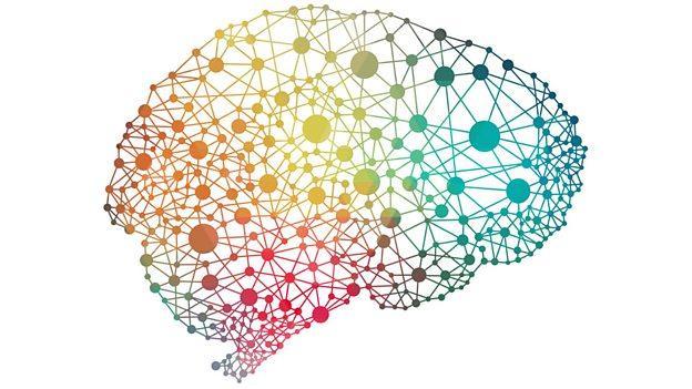 The problem with big brains 聪明大脑所带来的问题