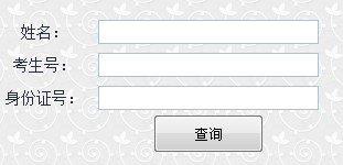 2013年山东理工大学高考录取查询系统