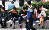 大学生求职路漫漫 坐地吃饭