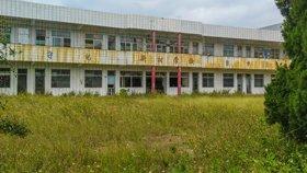 村小遭废弃 教学楼完好杂草丛生