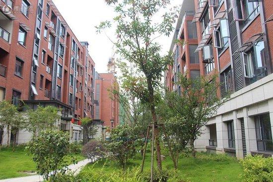 发展与教育问题,龙凤生态城就这么轻松的解决了