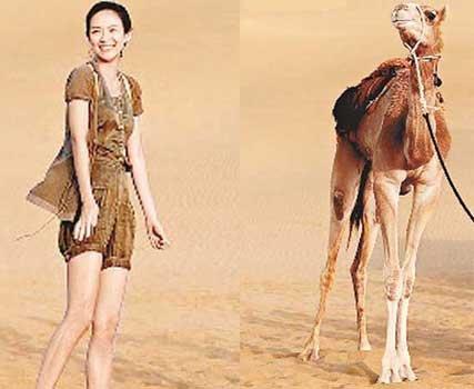 章子怡赴沙漠主持节目 拍照姿势酷似长腿骆驼图片