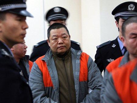 臧天朔上诉理由与事实不符 惨被驳回面临监禁