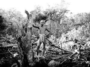 印度上演现实版《阿凡达》 阻止开矿者破坏圣山