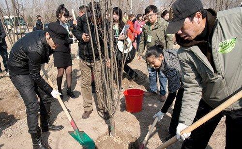 黄晓明捐款二十万元 与冯小刚等植树支持环保