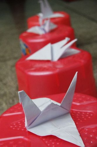 快乐男声心连青海 爱心纸鹤为玉树祈福