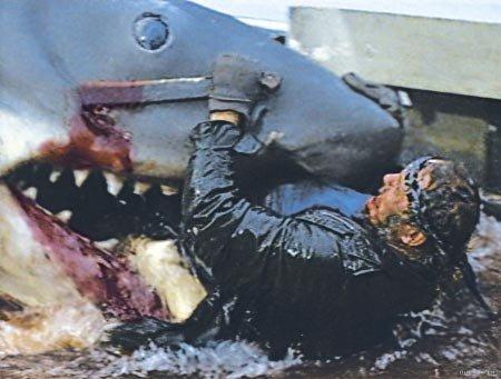 《大白鲨》\游\进内地荧屏