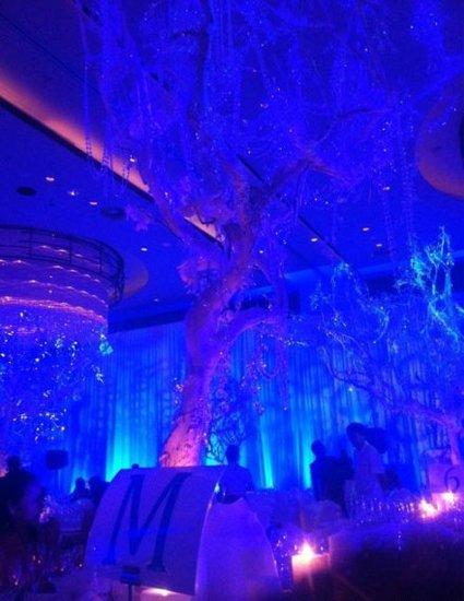 大S婚礼现场直击 蓝色梦幻般的宴会大厅(图)