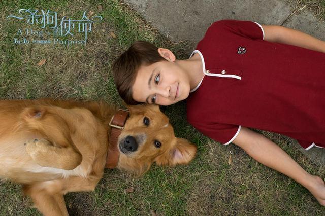 妈妈团:《金刚狼3》有观影提示《一条狗》泪崩