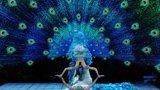 杨丽萍舞蹈《雀之恋》