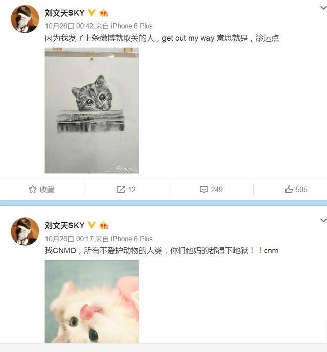 刘文天微博怒斥吃猫人群 代表喵星人为你点赞