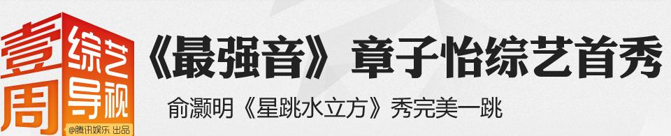 中国古筝网曲谱凉凉