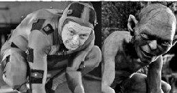 好莱坞大片特效揭秘图 《少年派》老虎是布偶