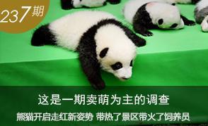 熊猫开启走红新姿势