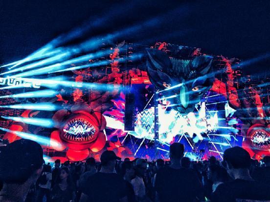 第二届丛林音乐节登陆深圳 掀起电音狂欢图片