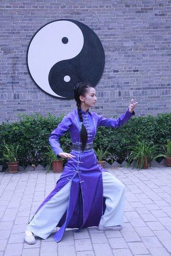 《广府太极传奇》创收视新高 黄圣依杨子成保证
