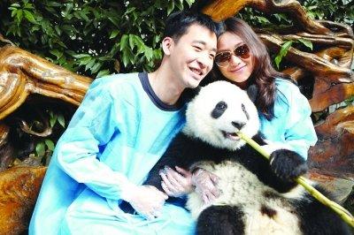 """徐静蕾新片成都杀青 大熊猫抢镜演""""亲密敌人"""""""