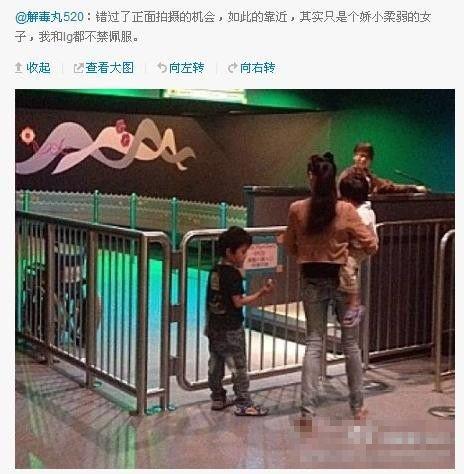 张柏芝携子游玩曝新照 不辞辛苦人称好母亲