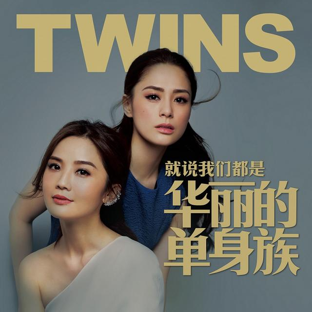 听一场twins演唱会:你有情怀,我会共鸣