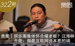 汪海林:互联网资本惹的祸