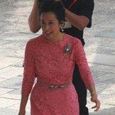 婆婆朱玲玲着粉红礼服出席