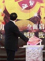王晓东台长揭晓2011春晚口号
