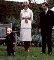 查尔斯与戴安娜带威廉见媒体