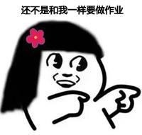 明星别样校园生活:全智贤打架第一Rain被孤立
