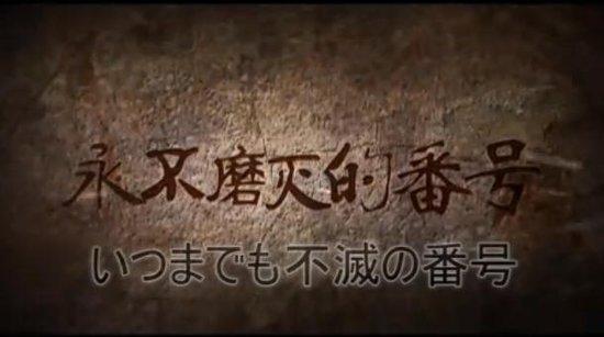 视频原创视频长江评论陆军集团军番号数量为