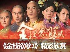 《金枝欲孽2》