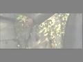 视频:董洁窦骁演唱《秋之白华》主题曲《携手》