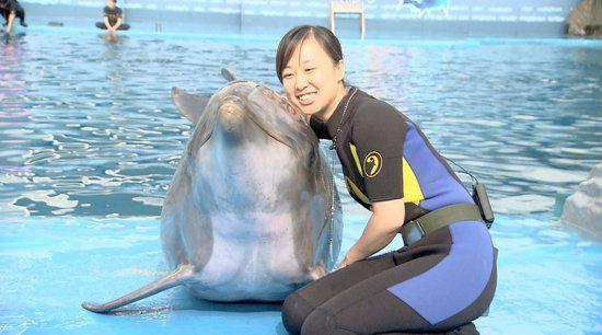 海豚驯养师现身《谁与争锋》 秒杀国宝拟音师