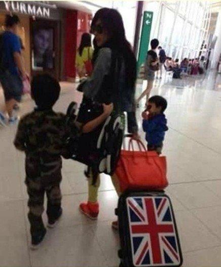 张柏芝或将携两子移居加拿大 谢霆锋不回应