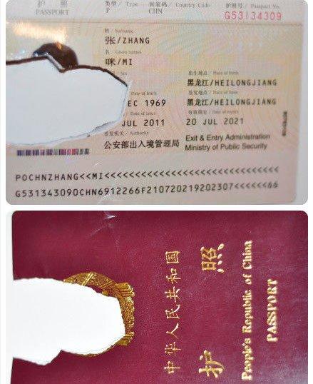 张咪曝护照被举报人撕毁 称对此事零容忍将维权