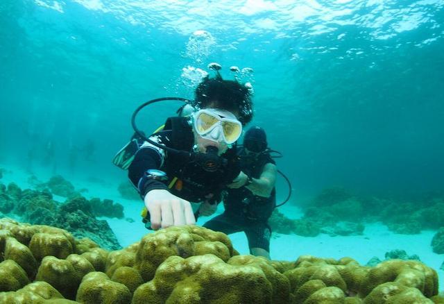 8月,李健发行个人第6张创作专辑,收录了以海为主题的《深海之寻》,亦图片