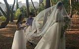 金星晒婚纱照分享幸福