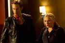 《真爱如血》第六季确定回归时间 6月16日首播