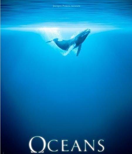 """《海洋》1秒镜头等3年 名导""""看上""""冯小刚"""