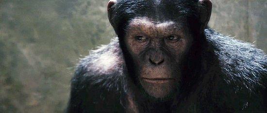 新版《人猿星球》CG猩猩效果曝光 WETA公司制作