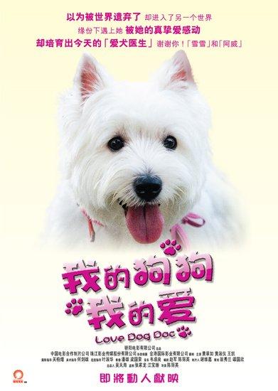 《我的狗狗我的爱》公益特辑 倡导关爱流浪动物