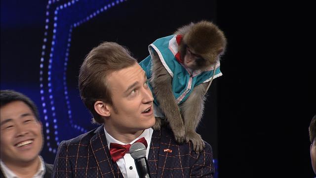 动态猴子图片大全可爱
