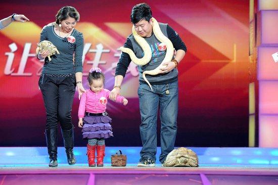 《我们有一套》亲密喂陆龟 三岁小女孩和蟒蛇睡