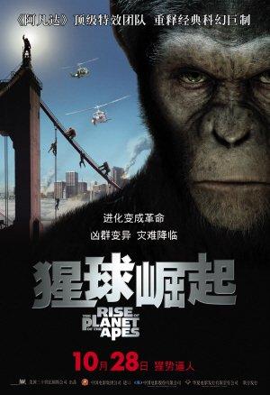 《猩球崛起》首发中文海报 10月28日内地首映