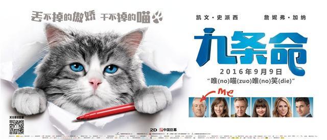 《九条命》醉酒猫可爱,《鲨滩》挑战肾上腺素