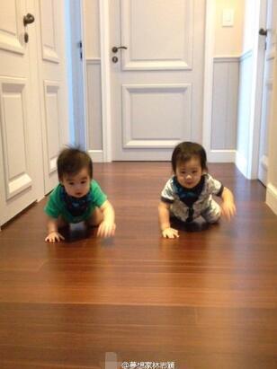 林志颖双胞胎儿子爬地讨抱抱 心都要被融化了