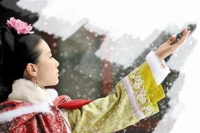 《步步惊心》登陆湖南卫视 主角刘诗诗被批难看