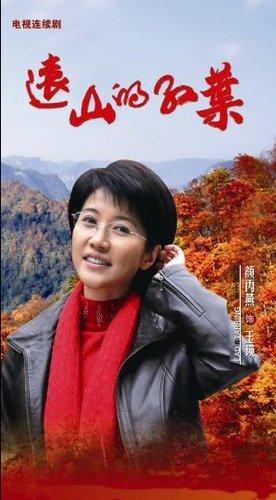《远山的红叶》热播 颜丙燕感慨领导不易当