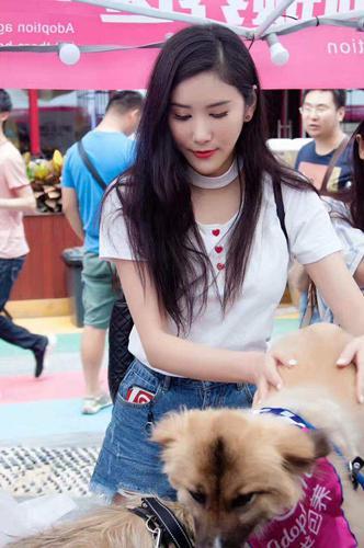高可儿助阵北京领养日 为流浪猫狗寻家爱心爆棚